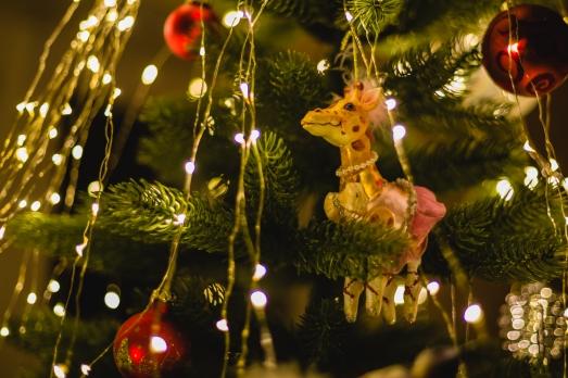 2017_12_Weihnachtsdeko 065
