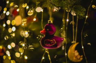 2017_12_Weihnachtsdeko 071